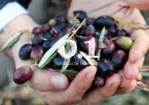 最高品質 オリーブオイル おすすめ 酸度0.1 カスティージョ・デ・タベルナス0.1