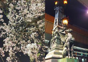 桜とガーディアン 東京 日本橋