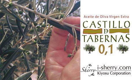 タベルナス砂漠からの贈り物 酸度0.1の奇跡~カスティージョ・デ・タベルナス0.1