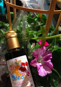 カスティージョ・デ・タベルナス0.1と朝顔 日本の素敵な夏の風物詩 入谷の朝顔祭り