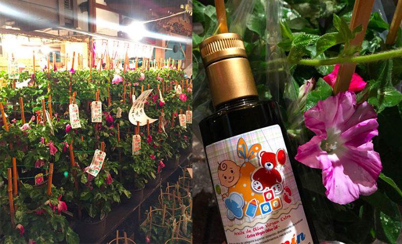 【夏の風物詩】入谷の朝顔市(朝顔祭り)~酸度0.1のオリーブオイルが出逢う日本の風景