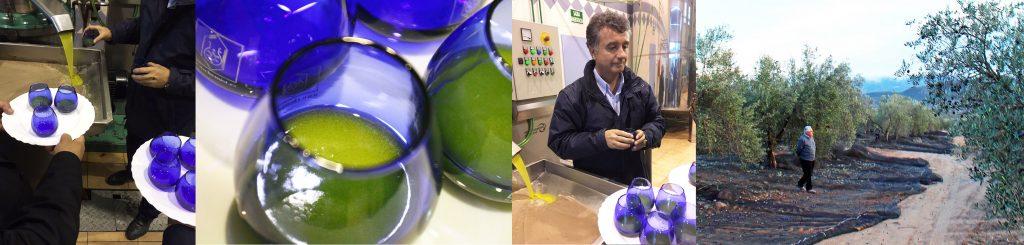 オリーブオイル 最高品質 カスティージョ・デ・タベルナス