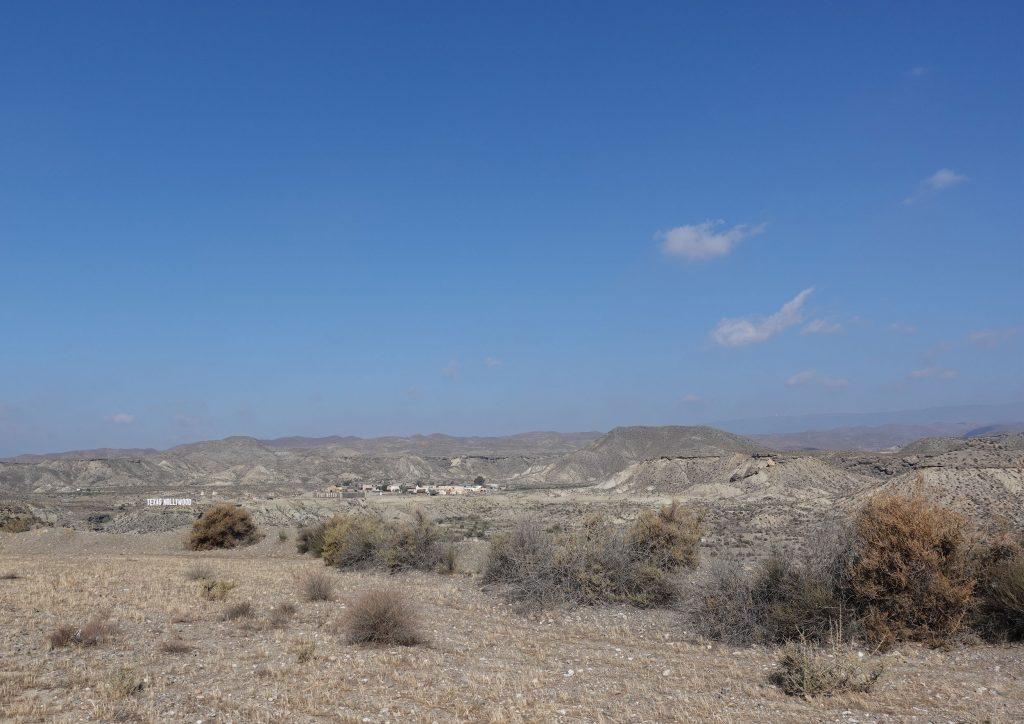 タベルナス砂漠 世界最高品質のエクストラバージンオリーブオイル