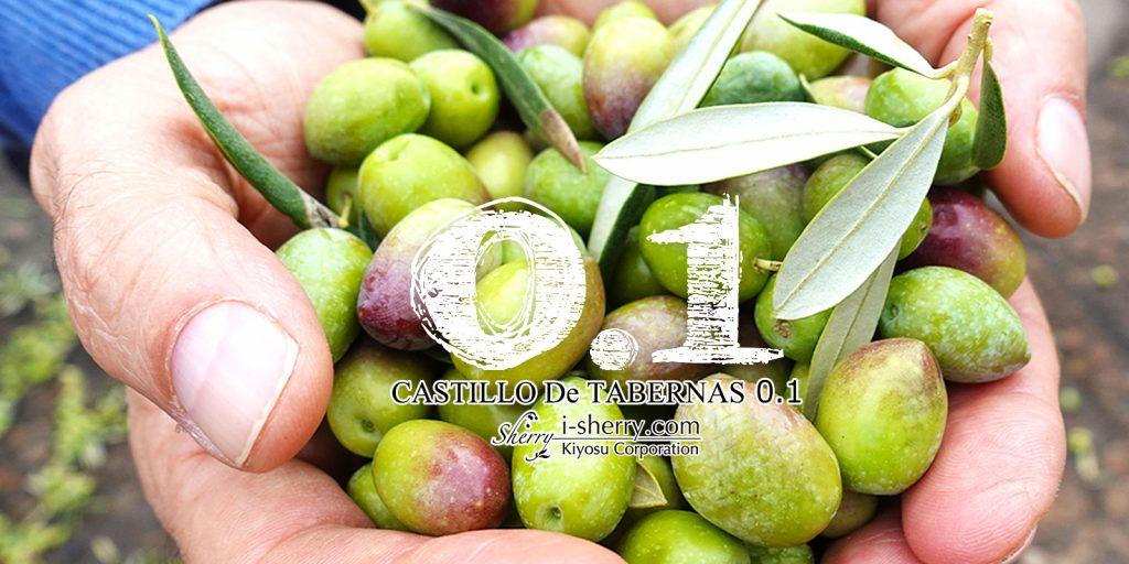 カスティージョ・デ・タベルナス0.1 酸度0.1